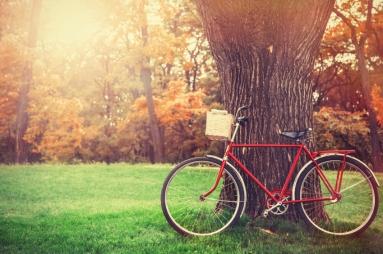 Fall-Biking.jpg