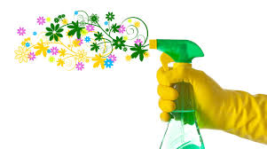 spring cleaning.jpg